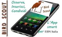 Birdscout